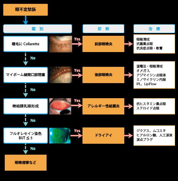 鑑別診断・治療のフローチャート